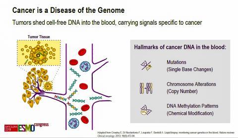 암 조직의 세포 없는 DNA가 혈류로 흘러 어가며, 이 DNA 변형에서 암에 대한 특이 신호를 발견해 낸다.  Creit: 2019 ESMO Congress 발표자료