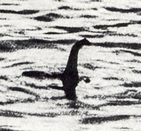 1933년 이후 베일에 가려져 있던 스코틀랜드 네스호 괴물 '네시'의 정체가 유전자분석을 통해 밝혀지고 있다. 호수 속 생물체 250종의 DNA를 분석한 결과 거대한 뱀장어가 괴물로 오인 받았을 가능성이 제기되고 있다. ⓒWikipedia