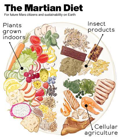 화성인을 위한 다이어트 식단. © eatlikeamartian.org