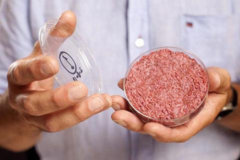 세포를 배양해서 만든 인공육류. © cdigest