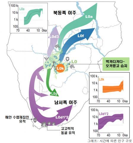L0 그룹의 하위 계통과 이주 지도. L0 미토게놈(미토콘드리아 DNA) 그룹은 인류의 가장 오래된 뿌리의 직계 혈통이다. 연구진은 L0 하위 계통의 분화 연대표를 기후 연구와 결합해 이주 시기와 경로를 밝혔다. CREDIT: IBS 기후물리 연구단 / Nature