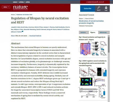 '네이처'지에 발표된 논문 요약과 도해.  CREDIT: Springer Nature