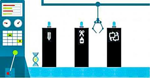연구팀은 가장 흔하게 나타나는 돌연변이 유전자가 어떻게 암을 유발하는지를 알아내 유전자 편집기술과 역배열 올리고핵산염 치료법 등으로 여러 암을 표적 치료할 수 있는 방법을 제시했다. CREDIT: illustration by Kim Carney / Fred Hutch News Service