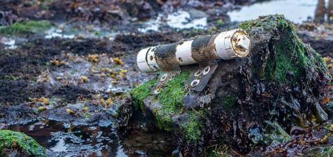 600만 평방킬로미터가 넘는 해역의 180여개 보호가 필요한 구역 중 실제로 보호조치가 시행되는 해역은 1.7%에 불과하다는 연구결과가 발표됐다. 나머지 98.3%는 방치상태에 있는데 이에 대한 대책이 강구되고 있다. ⓒoregonstate.edu
