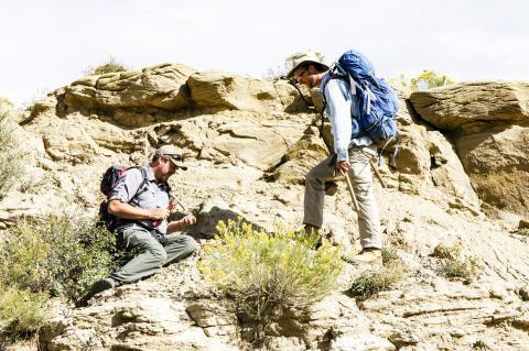 코랄 블러프스 지역에서 화석 결석을 찾고 있는 이안 밀러 박사(왼쪽)와 타일러 라이슨 박사(오른쪽). Credit: HHMI Tangled Bank Studios