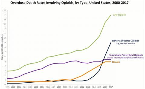 오피오이드 관련 사망 통계표. 미국 CDC 통계.