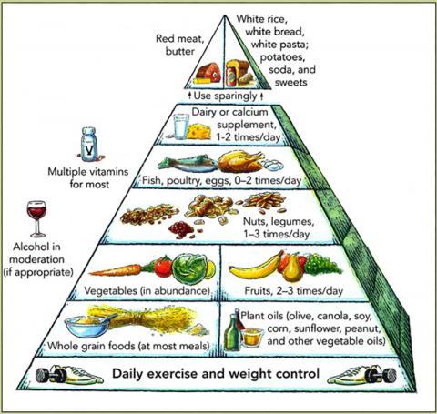 지중해식 식이요법과 관련된 섭취 패턴 요약.  Credit: Wikimedia