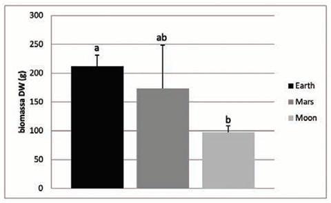 토양별 작물 생산량 비교. © Wieger Wamelink et al.