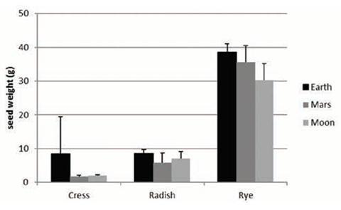 수확한 종자의 무게 비교. (좌측부터) 큰다닥냉이, 무, 호밀 © Wieger Wamelink et al.