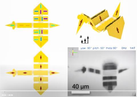 수십 미크론 크기의 새 모양 미세로봇의 움직임을 찍은 동영상. 왼쪽 상단 그림은 각 구성품에 있는 나노자석 배열이 서로 다른 방향으로 자화될 수 있다는 것을 다른 색상으로 나타내준다. 아래는 각 패널이 어떻게 자화되는지를 보여준다(빨간 화살표). 오른쪽 아래의 비디오는 오른쪽 위의 새 모양 모델이 날개를 퍼덕이는 모습. 동영상 캡처. CREDIT: Paul Scherrer Institute/Swiss Federal Institute of Technology, Zurich