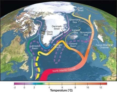AMOC 흐름을 보여주는 지도. 선의 색깔은 온도를 나타낸다. ⓒ 위키피디아