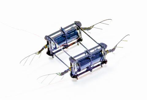 날개 네 개와 두 개의 구동기를 장착한 로보비 모델은 여러 번의 충돌 위험을 극복하고 복잡한 환경 속을 비행할 수 있었다.  CREDIT: Harvard Microrobotics Lab