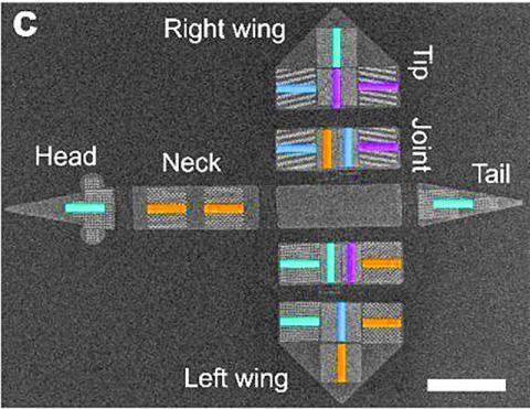 나노급 자석 배열을 가진 새 모양의 구조물을 주사전자현미경으로 관찰한 모습. 자석들은 커러 바에 평행한 방향으로 서로 다르게 자화될 수 있다. 연구팀은 이런 자화 프로그래밍을 통해 새가 자기장 안에서 다른 움직임들을 수행할 수 있도록 만들었다.  CREDIT: Paul Scherrer Institute/Swiss Federal Institute of Technology, Zurich