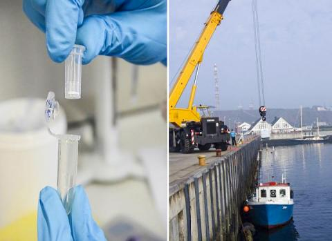미생물 연구는 실험실에서 분자 원리를 발견하는 것에서부터 실제 해양 생태계에서 그 중요성을 검증하는 것까지를 포괄한다. 이번 연구는 문헌연구에서 시작해 실제 탐사선을 타고 다량의 자료를 수집해 분석했다.  CREDIT: Max Planck Institute for Marine Microbiology/ G. Gerdts