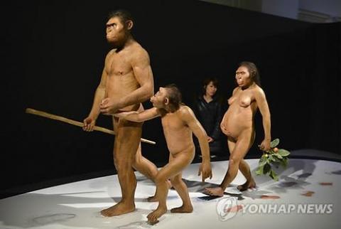 일본국립과학박물관에 전시됐던 오스트랄로피테쿠스 아파렌시스(루시) 일가족 모형 ⓒ EPA / 연합뉴스