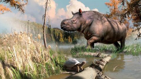 수백만 년 전에 유콘 지역에 서식한 동물들을 그린 상상도. ⓒ Yukon government(Julius Csotonyi)