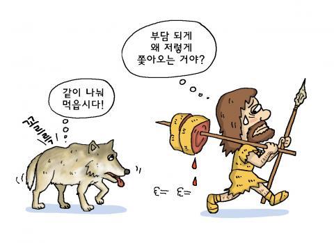 늑대가 인간이 사냥 후에 남긴 뼈다귀에 남은 살점을 먹기 위해 인간을 쫓아다니다가 인간에게 길들여졌을 수도 있다. ⓒ윤상석