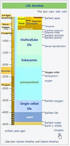 지구에서 생명체가 탄생한 뒤 산소대폭발 사건이 일어나며 덩치 큰 동물들이 진화하게 되었다. 그림은 생명체 출현 시간표.  Credit: Wikimedia
