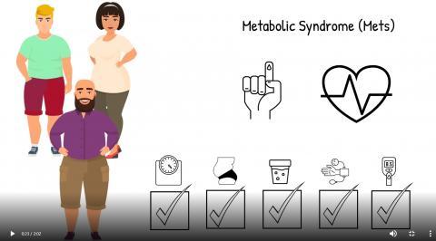 대사증후군이 있으면  복부비만과 고혈압, 고혈당, 고지혈증 같은 위험 요인이 동시에 나타나 당뇨병과 뇌졸중, 동맥 경화 등을 일으키고, 심혈관 질환 위험도 크게 높인다. 동영상 캡처 CREDIT: Salk Institute