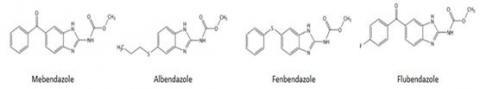 벤즈이미다졸 카바메이트계 구충제들의 화학구조는 유사하다.