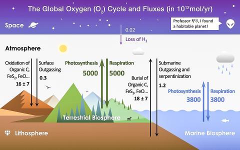 오늘날의 지구상 산소 순환주기에서 볼 때의 산소 저장소와 흐름의 모습.  Credit: Wikimedia / Pengxiao Xu
