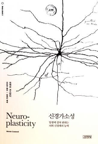 모헤브 코스탄디 지금, 조윤영 옮김 / 김영사