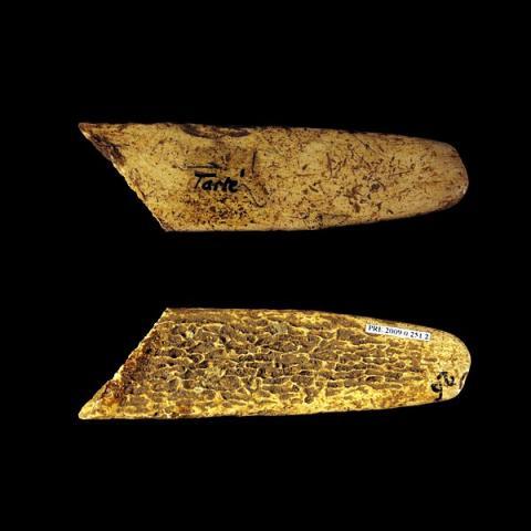 일찍이 네안데르탈인이 만들었던 가죽손질도구 리수아 ⓒ Rama