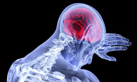 연구팀이 개발한 약은 초기 치매나 혈액-뇌장벽 누수로 인한 알츠하이머병 치료에 도움을 줄 것으로 보인다.  Credit: Pixabay / VSRao