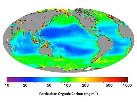 칼립소 위성의 라이다가 측정한 표면 미립자 유기 탄소의 전 세계 분포. © ESO