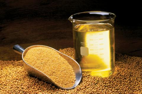 콩기름. ⓒ 위키피디아