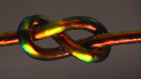 압력에 따라 색깔이 변하는 매듭. 노란색 부분이 압력이 높다. ⓒ Joseph Sandt