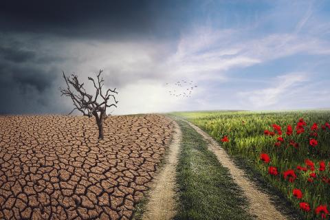 기후변화와 지구온난화로 전 세계는 계속 더워지고 침수되고 불타고 있다. ⓒ Image by enriquelopezgarre from Pixabay